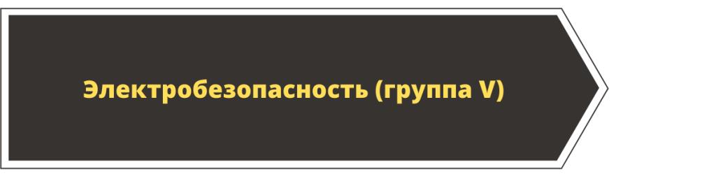 Obuchenie-po-`elektrobezopasnosti-5-gruppa